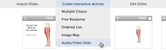 select multimedia slide