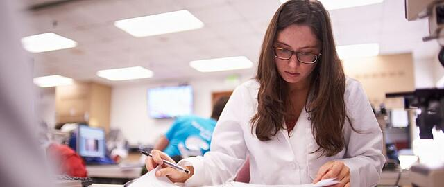 MSU_College_of_Veterinary_Medicine_-_Student_Studying.jpg